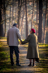 old couple waling and holding hands in park