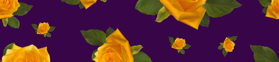 Wall Mural - banner pattern of yellow roses