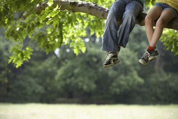 Low section of little boy and girl relaxing on tree branch