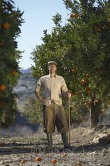 Full length portrait of middle age farmer standing in orange field