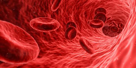 Sang et artère en microbiologie
