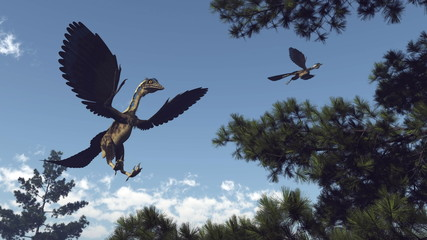Archaeopteryx birds dinosaurs flying - 3D render Wall mural