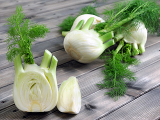 Fresh fennel grown in organic farming