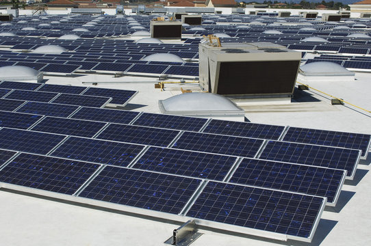 Array of photovoltaic cells at solar power plant