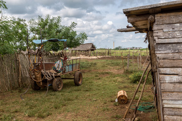 Sugar farm in Cuba
