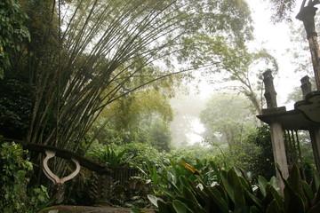 Las Pozas, a surrealist botanical garden in Xilitla Mexico by Edward James