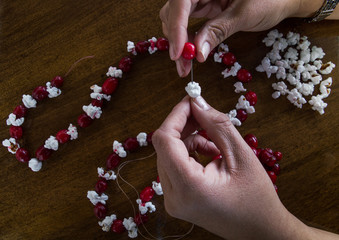 Woman's hands threading a fresh cranberry and popcorn to make a Christmas garland. Popcorn, cranberries and completed garland are on a wooden tabletop. Photographed in natural light.