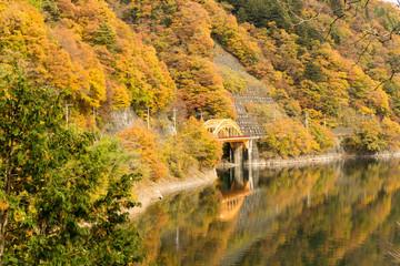 奥多摩湖の紅葉 麦山橋
