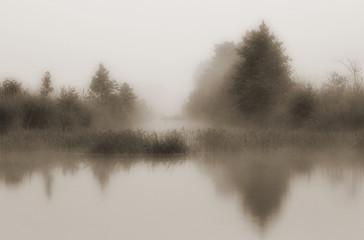 Landscape with morning mist - 130039335