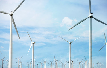 Windfarm and sunshine
