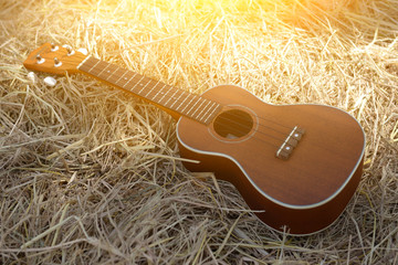 Ukulele on a pile of hay with a light vintage.
