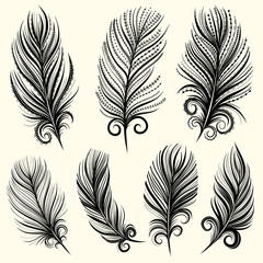 Set of illustrations with decorative feathers. Black and white