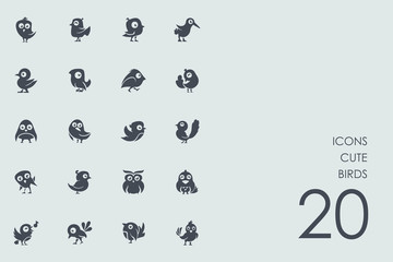 Set of cute birds icons