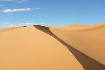 Dune Landscape of Sahara Desert