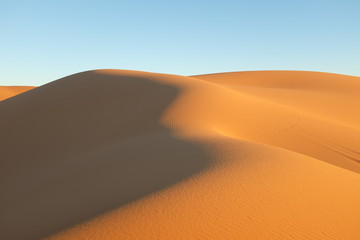 Sand Dune in the Evening