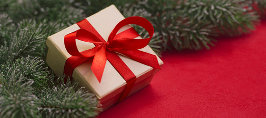 Gift and branches of Christmas tree