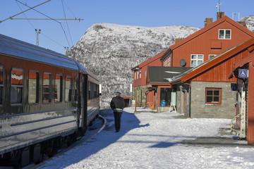 Flambahn Norwegen historische Eisenbahn Myrdal