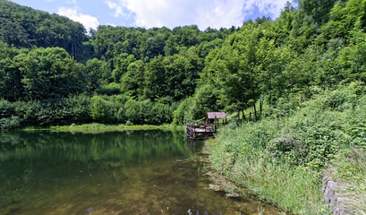 Beautiful landscape filled with greenery surrounding a clear water body