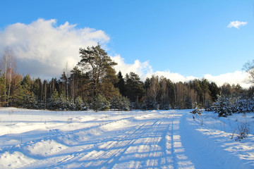 Winter landscape. Road in winter forest on a sunny day.