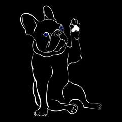 dog, vector, breed, cute, pet, animal, bulldog