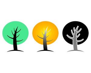 tree leaves circle