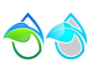 leaf water drops