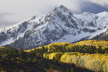 Sneffels Range with aspens in fall colors, near Ouray, Colorado, USA
