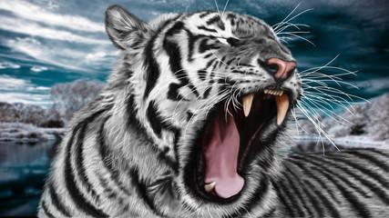 Sibirian paintin white wild tiger.