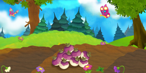Cartoon nature scene - field with turnips - illustration for children