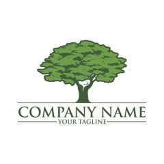 Green Oak Tree, Vector Logo Design