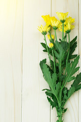 Wall Murals Lily of the valley chrysanthemum yellow on background wood and soft light