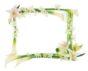 Frame of Flower