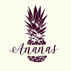 Image of pineapple fruit. Vector logo
