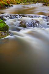 Mountain stream in southern Bohemia. Czech Republic.