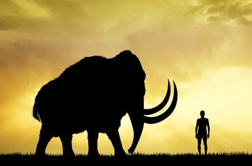 mammoth and man at sunset