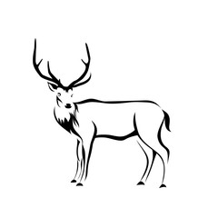 deer figure, vector illustration