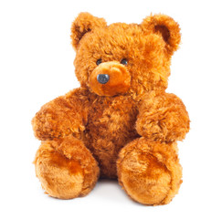teddy bear isolated on white background