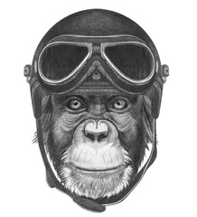 Portrait of Monkey with Vintage Helmet. Hand drawn illustration.