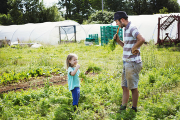 A man and a girl eating freshly harvested carrots in a vegetable patch.