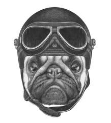 Portrait of Pug Dog with Vintage Helmet. Hand drawn illustration.