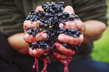 A man with a handful of fresh crushed red grapes.