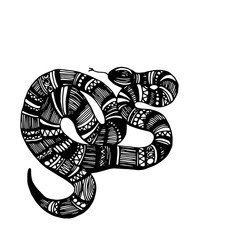snake, vector, animal, reptile, illustration, wild, danger