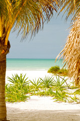 Paradise of white sandy caribbean beach