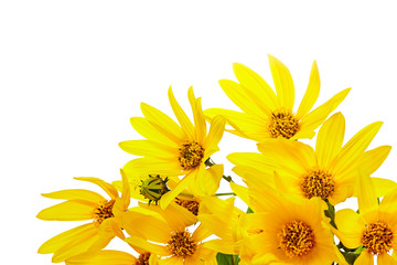 bouquet of fresh yellow flowers on wooden background