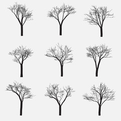 Set of Silhouette of tree with bare branches, vector illustration