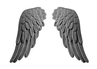 dark plaster wings on isolated white background