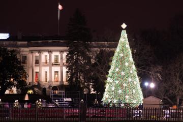 The White House and Christmas Tree - Washington DC, United States