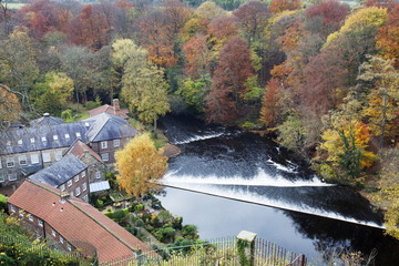 Castle Mills and the Weir on the River Nidd at Knaresborough, North Yorkshire, Yorkshire, England, United Kingdom, Europe