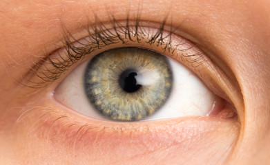 children's eyes. macro