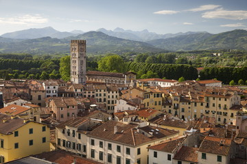 View over city to San Frediano from atop Torre Guinigi, Lucca, Tuscany, Italy